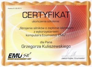certyfikat strojenie silników